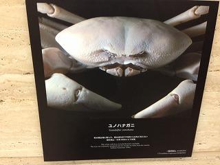0128.jpg