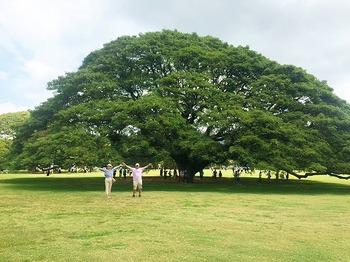 ハワイ6.jpg