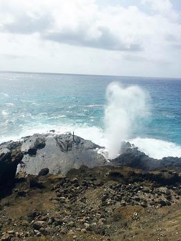 ハワイ8.jpg