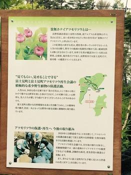入笠山3.jpg