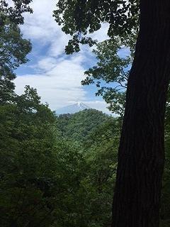山5.jpg
